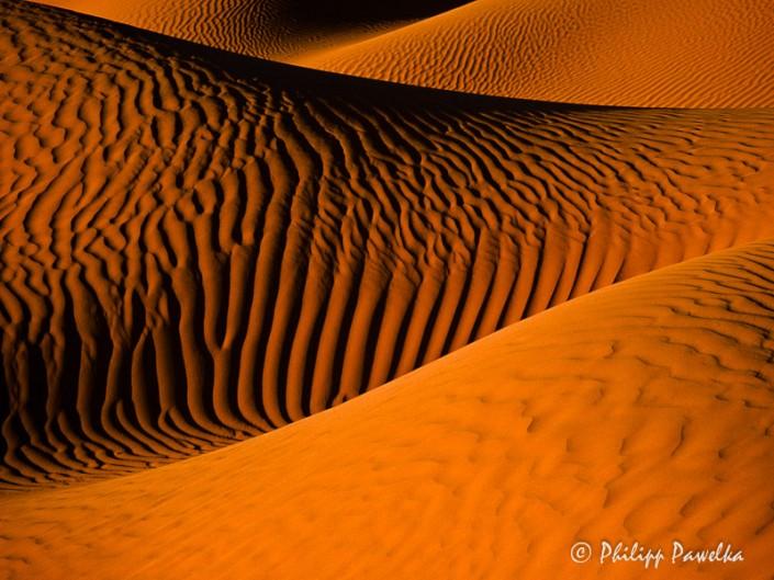 Saharan Desert Dreams